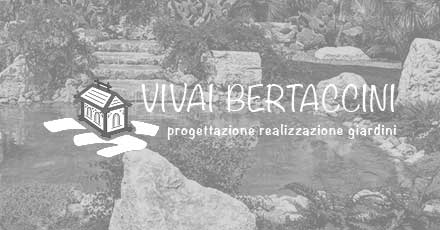 Portfolio Web Realizzazione Siti Internet Forlì | Vivai Bertaccini