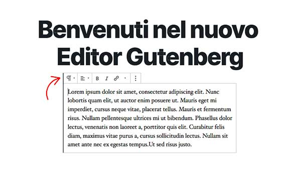 Blocchi Gutenberg WordPress