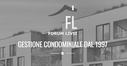 Portfolio Web Realizzazione Siti Internet Forlì | Forum Livii